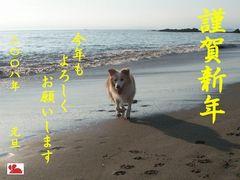 ファイル 342-1.jpg